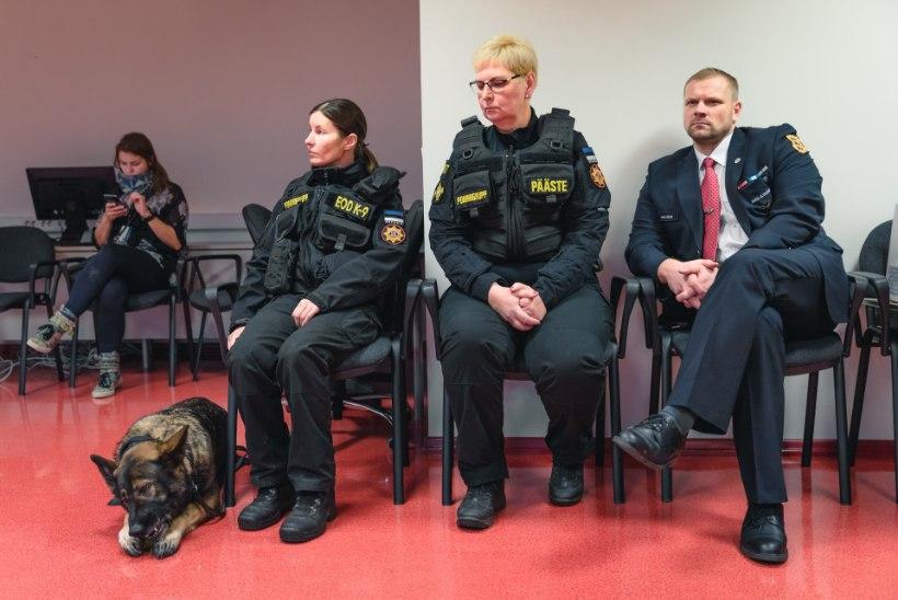 NUNNU GALERII | Tunnustati Eesti parimaid teenistuskoeri ja nende juhte