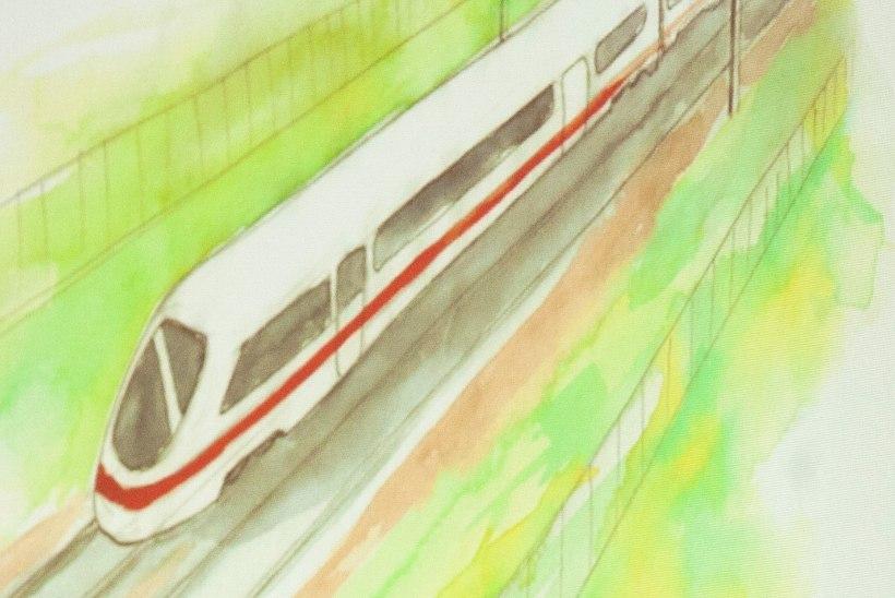 Vastukaja   Rail Balticu uurimiseks tuleb moodustada erapooletu komisjon