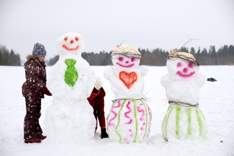 ELAGU TALVEVÕLUMAA! Jõulud tõotavad tulla lumised