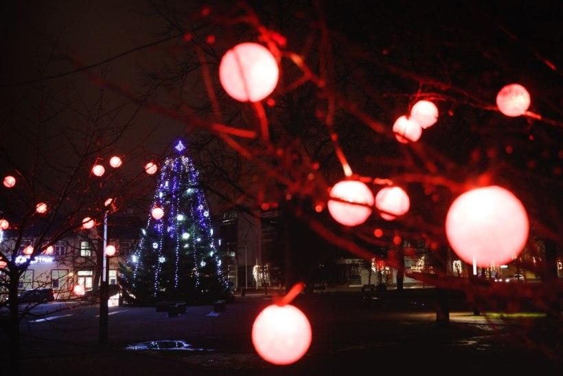FOTOD   Võrukatele toob jõulurõõmu 13-meetrine nulg