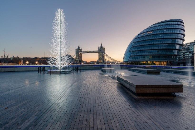 Eestlaste disainitud kuusk valiti Londoni kesklinna ehtima