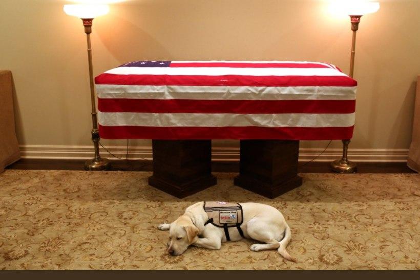 FOTOD | Algas president George H. W. Bushi viimne teekond