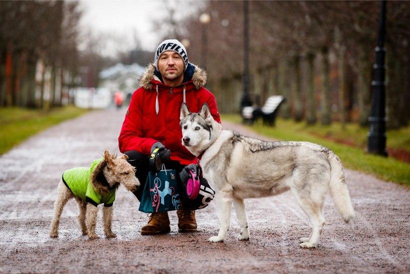 PEHME JA KARVANE | Bert Pringi: toidutööstus on veterinaarid enda kätte saanud