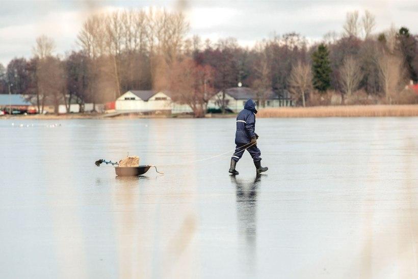 """Jääarmastajad eiravad päästeameti hoiatusi: """"No munadeni vette ju keegi ära ei upu!"""""""