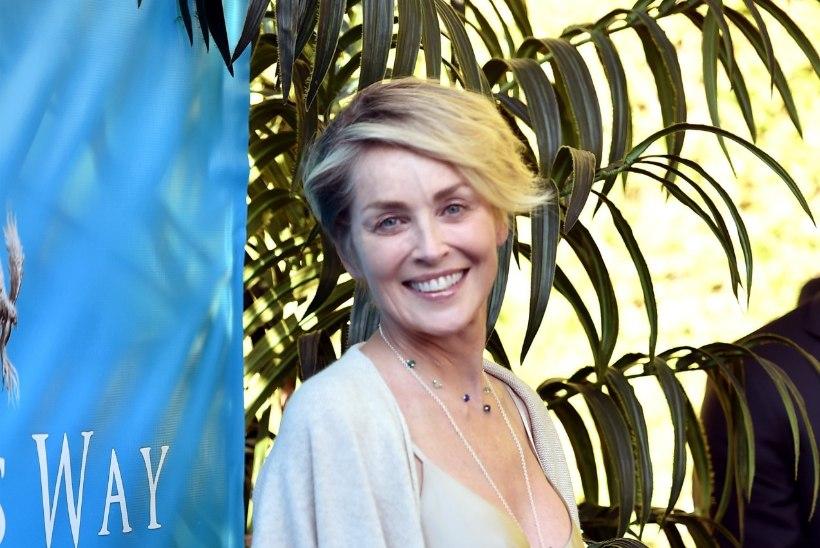Sharon Stone pidi insuldi järel uuesti rääkima õppima