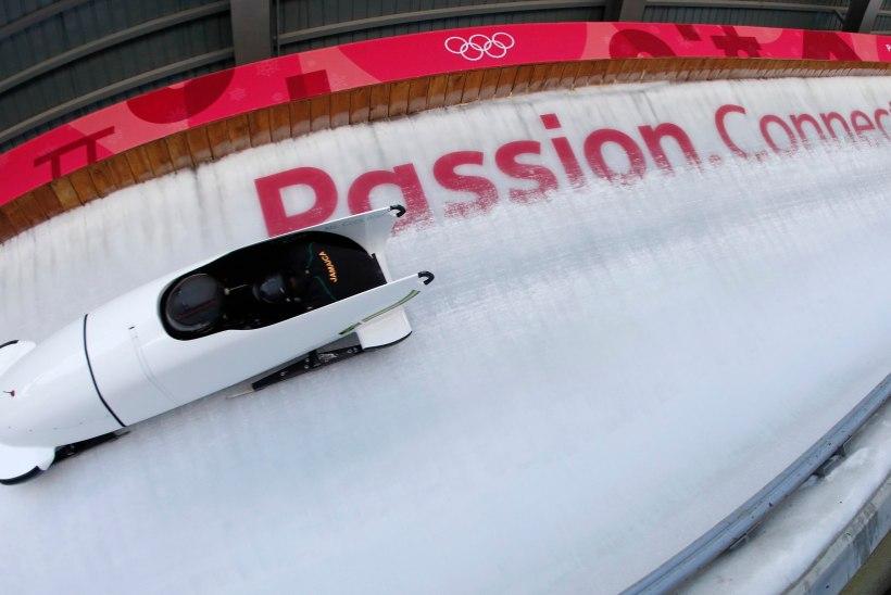 TOHOH! Olümpiavõitjast bobitreener pani protesti märgiks ameti maha ning jättis naiskonna kelguta