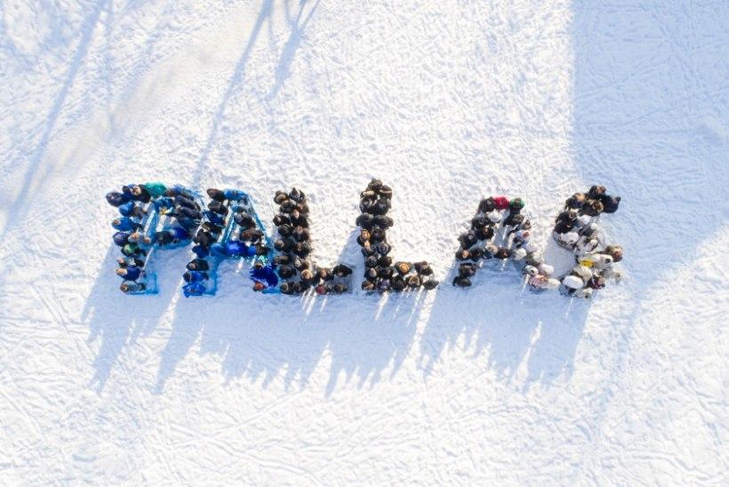 Kunstikool Pallas andis endast märku: üheskoos lumele ja pildile