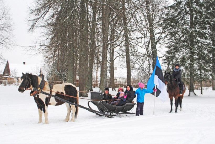 GALERII |Eesti hobusekasvatajad tegid Eestile kingituse
