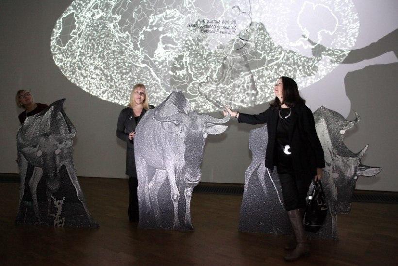 GALERII | Katja Novitskova näituse pidulik avamine Kumu kunstimuuseumis