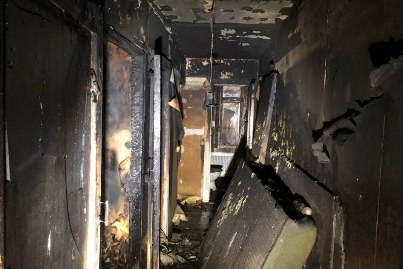 VIDEO ja FOTOD SÜNDMUSKOHALT | Viljandis hukkus elumaja põlengus inimene, kolm viidi haiglasse