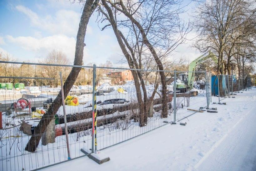 PILTUUDIS | Arnold Rüütli tühjalt seisnud kruntidel algas viimaks ehitus