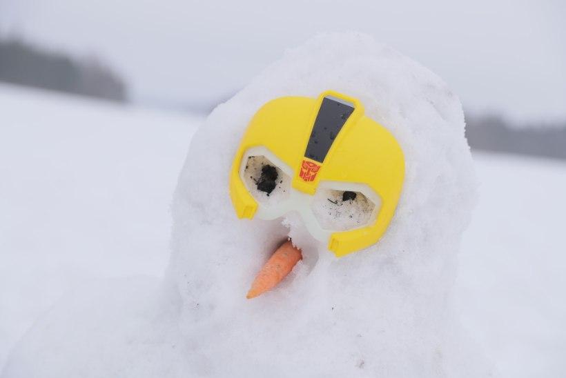 GALERII JA DROONIVIDEO | Väätsal kerkisid tuhanded lumememmed