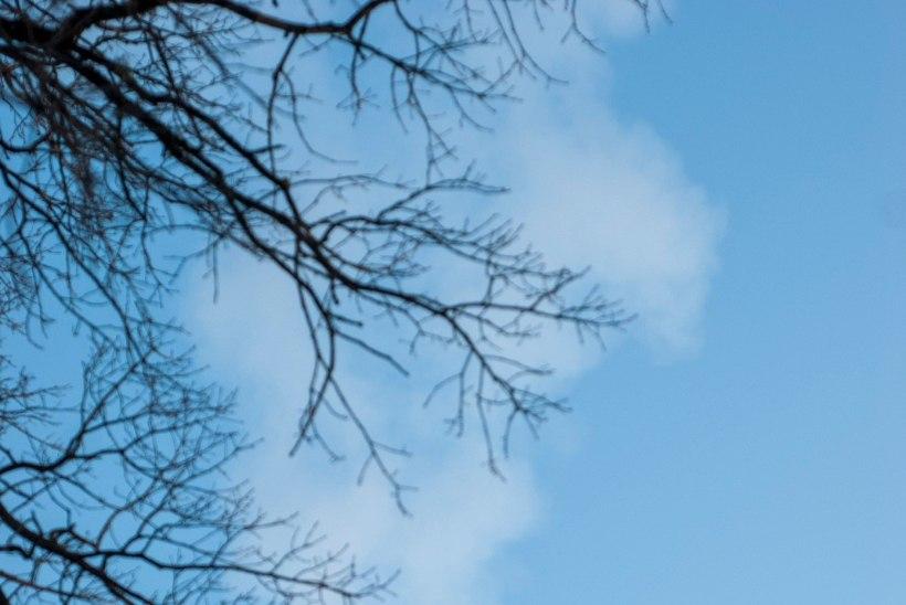 Usinate kütjate tõttu langes õhu kvaliteet viimaste aastate kehvimale tasemele