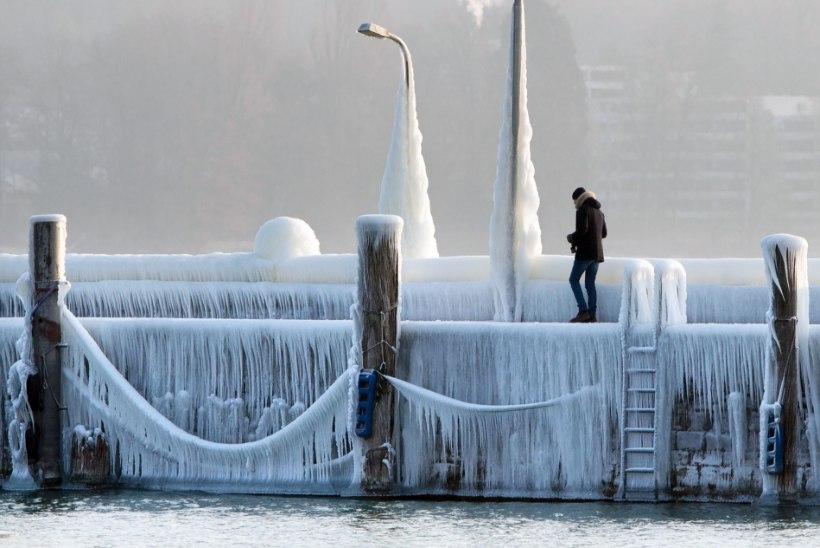 Euroopas on karm talveilm nõudnud üle 50 inimelu