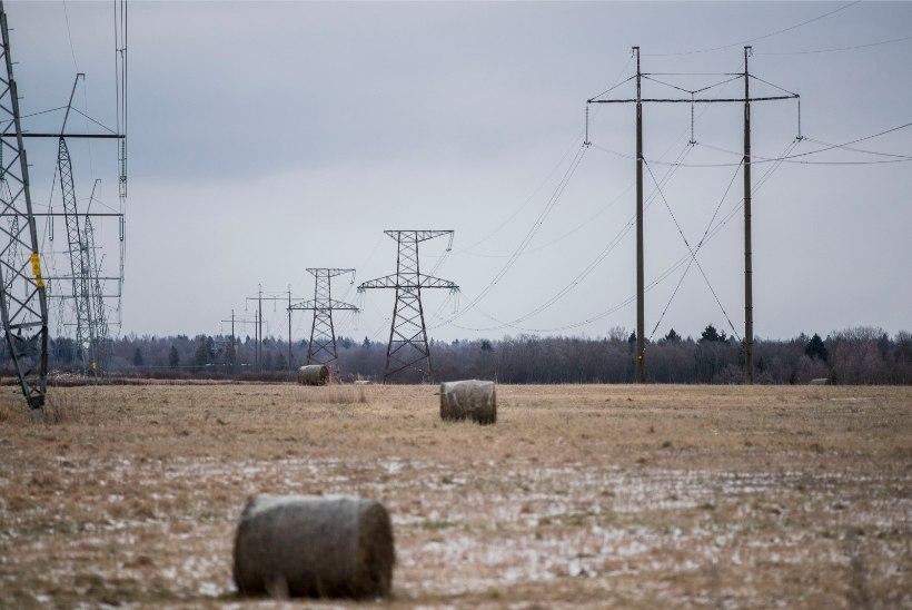 Suurim elektrifirma taotleb riigilt võrgutasu langust