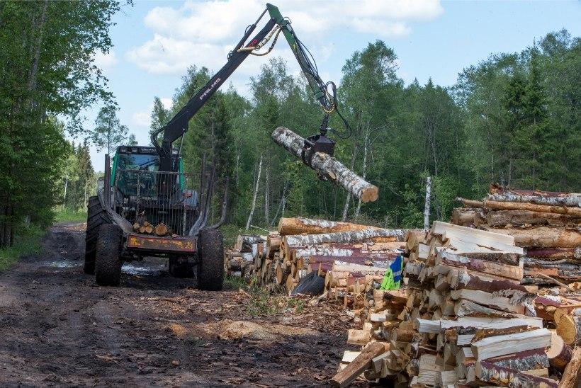 Sotsid soovivad metsadele raiepiirangut