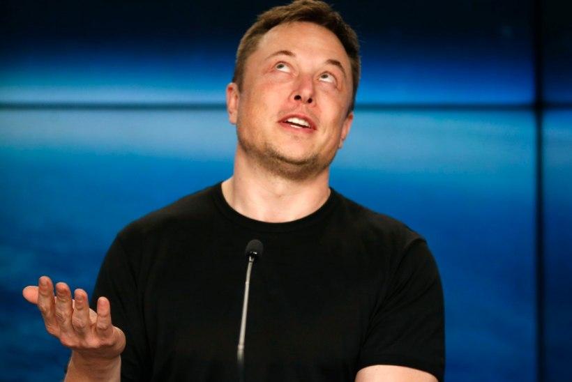 ŠOKK! Elon Muski isa sai oma kasutütrelt lapse
