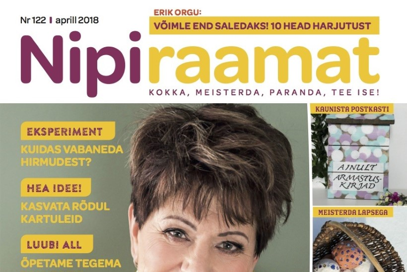 Uus ajakiri lettidel! Loe, millest seekord Nipiraamat kirjutab!