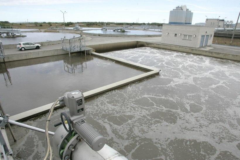 Kanalisatsiooni satub aina rohkem prügi: inimesed viskavad jäätmeid vetsupotti