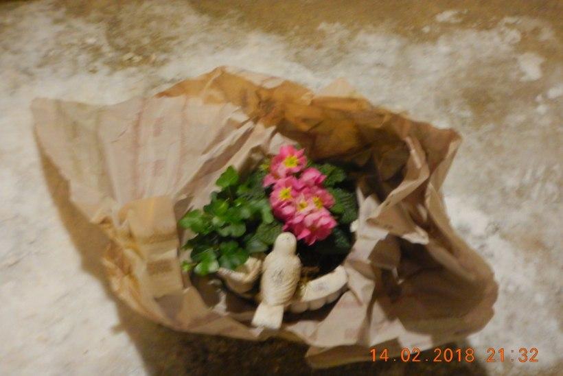 Naabrite tülis kahtlustatud pomm osutus lilleseadeks
