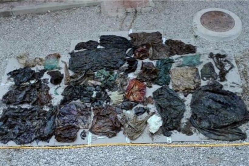 Hispaanias rannale uhutud kašeloti sisikonnast leiti 29 kilo prügi