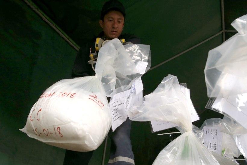 Eestist pärit mees kuulub jõuku, mis üritas Saksamaale pea tonni kokaiini smugeldada