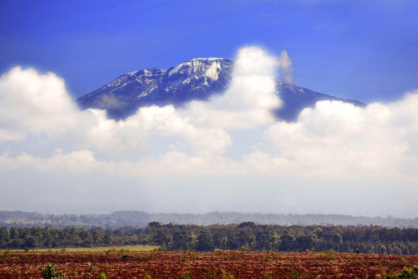 TELESAADE OTSIB OSALEJAID: Ken Saan tahab viia lahkumineku äärel paarid Aafrika kõrgeima mäe tippu