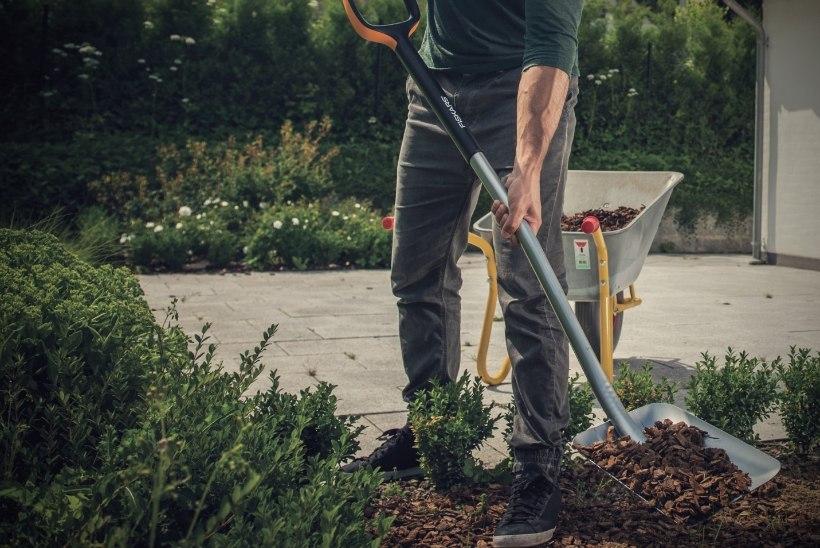 Õigete hooldusvõtete abil aiatööriistad hooajaks tippvormi