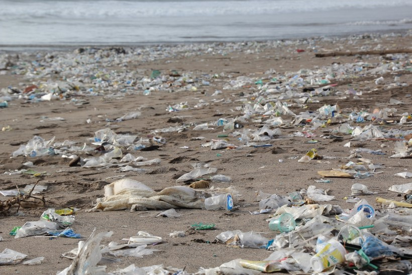 Kas plastisööja bakter päästab Maa plastikatkust?