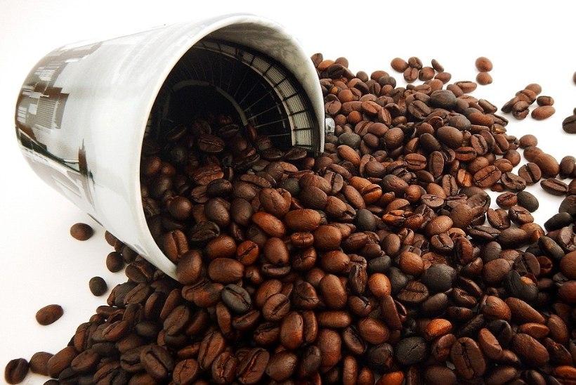 Vau! 5 nippi mida teha kohvipuruga!