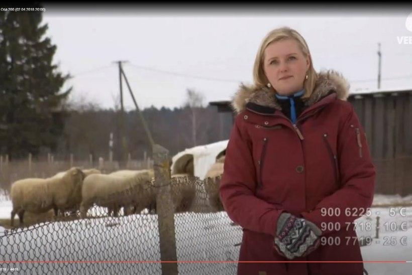 """KATI SAARA VATMANN: """"Signe surm on üle-eestiline rahvuslik vapustus."""""""