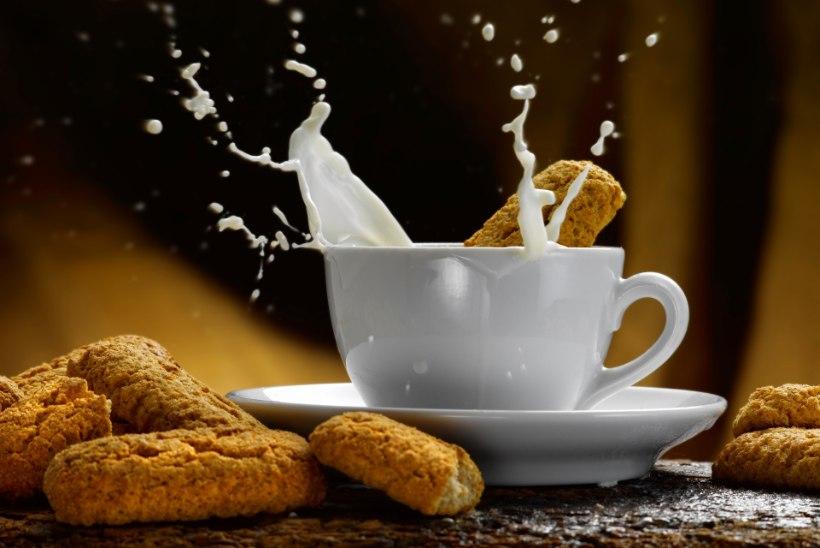 Neli asja, mida kohvipiima juures silmas pidada