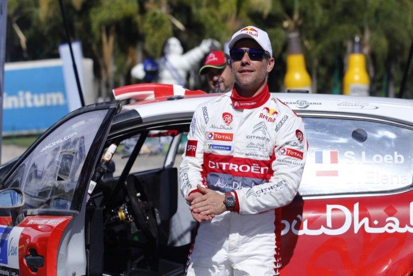 Korsika ralli eel: viiekordne maailmameister Ogier kardab vanameister Loebi