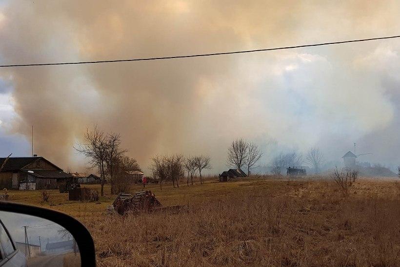 VIDEO ja FOTOD   Tabiveres põleb suur heinaküün