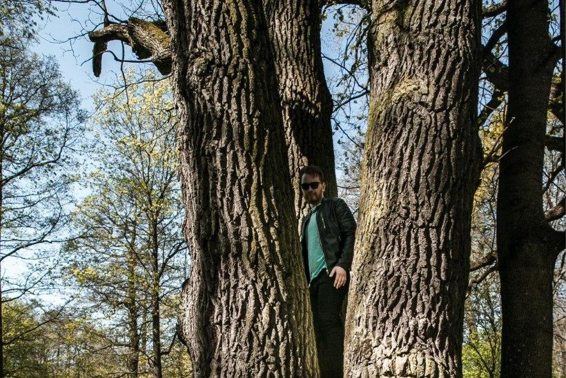 ÕL VIDEO JA FOTOD   Milline on see puu, mille juures Igor Mang oma ohvrit väidetavalt kabistas?