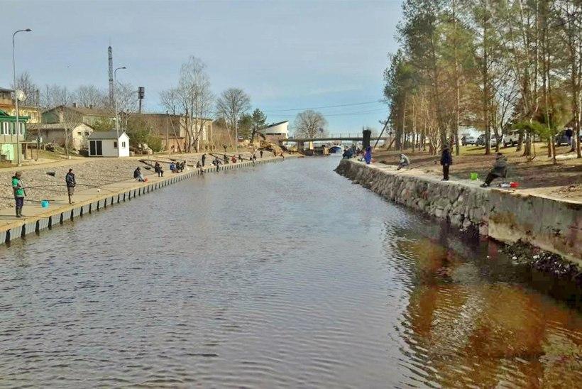Väike ja vaikne Mustvee jõgi