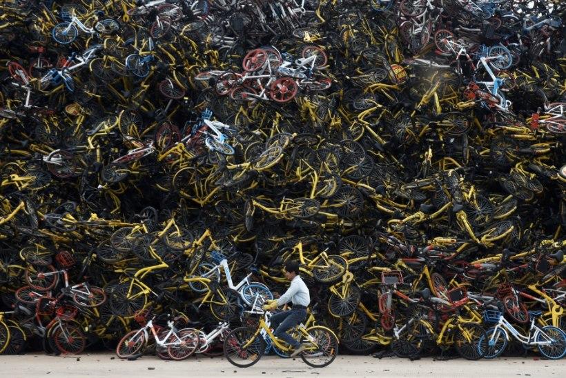 VIDEO JA FOTOD | Hiinas on tekkinud enneolematud jalgrataste surnuaiad
