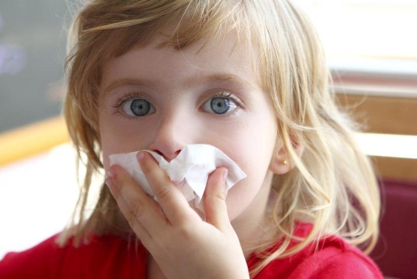 Ära ime tolmu ja hoia magamistuba jahe: neli asja, mis aitavad tolmuallergiat ennetada