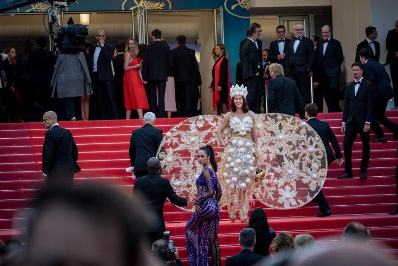 GALERII | ÕHTULEHT CANNES'IS: hiigelpikkadest kleitidest kerakujuliste kottideni ehk Vaata, mida veidrat staarid punavaibal kannavad