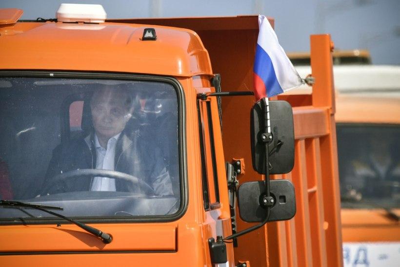 KRÕMNAŠ-KIISU: kass nimega Mostik ületas Kertši silla enne Putinit