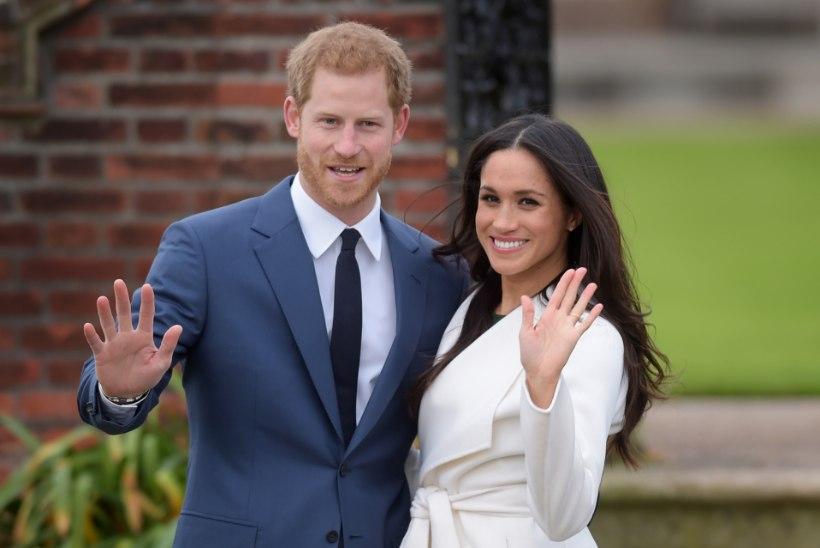 KUNINGLIK PULM: prints Harry ja Meghan Markle'i abiellumine läheb maksma 37 miljonit eurot