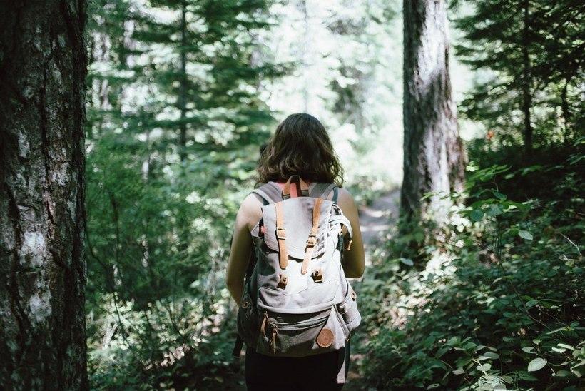 Head nipid, et metsas mitte ära eksida!