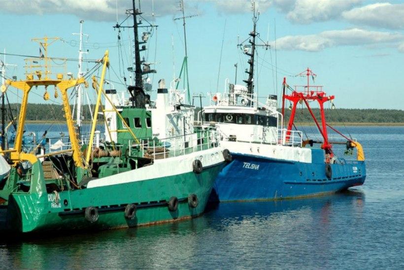 Kalandussektor saab taotleda koolitus- ja praktikatoetust