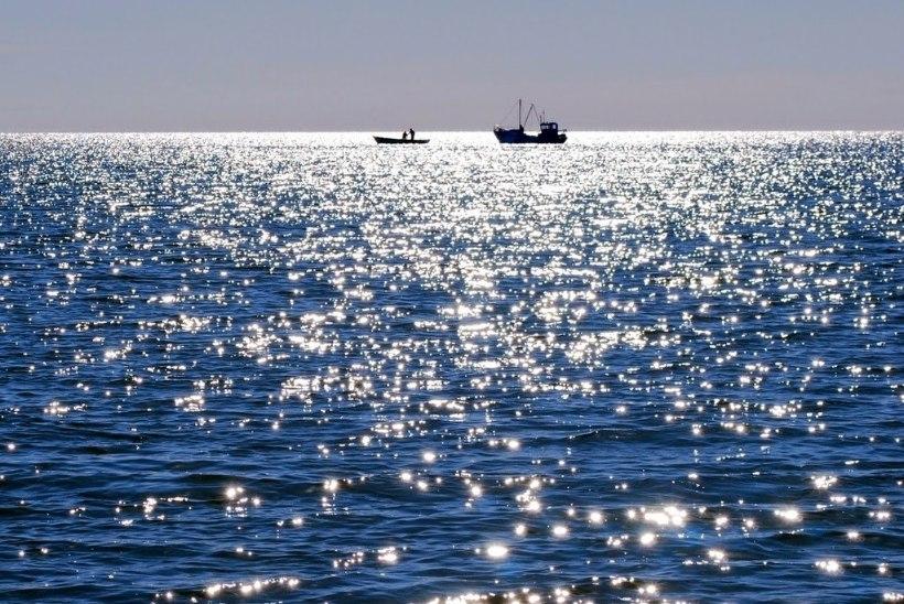 BLOGIAUHINNAD | Blogija Katrin Paukson: tegelen ohvrite ja kannatanutega – need on kohati karmid teemad