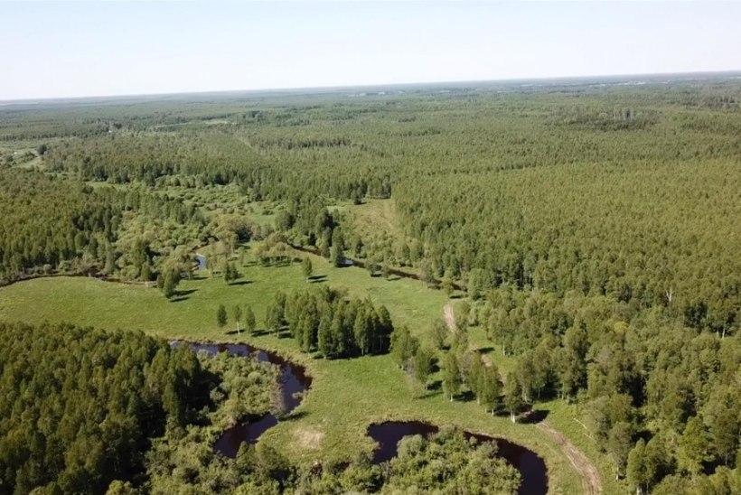 Droonivideo: Tartumaal avati terveks tehtud Laeva jõe lõik