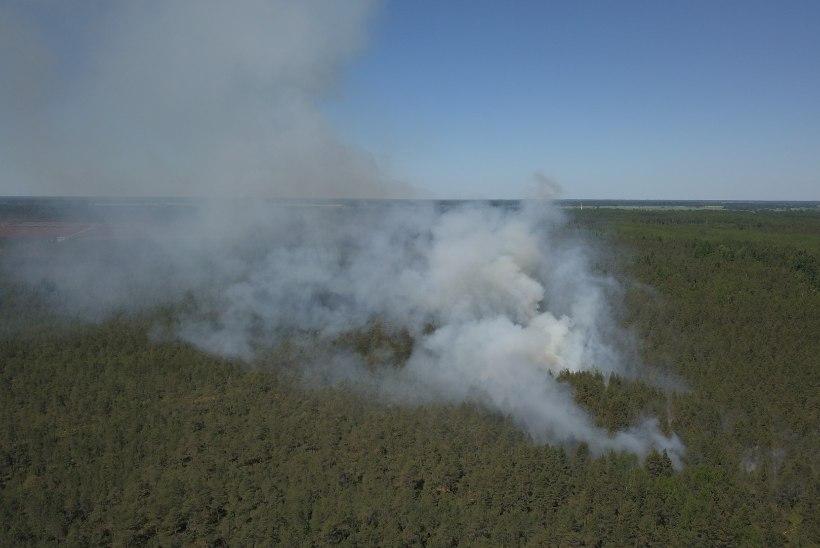 DROONIFOTOD | Lääne-Virumaa metsapõlengut kustutasid päästjad kolmest maakonnast