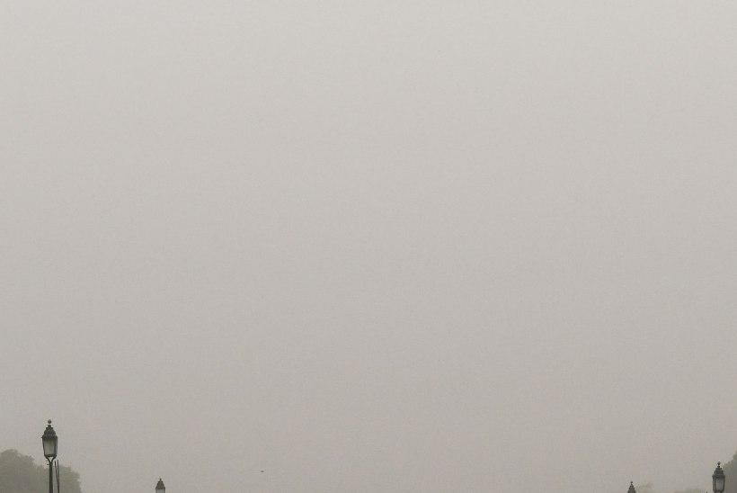 Indias on tolmutorm tapnud vähemalt 77 inimest