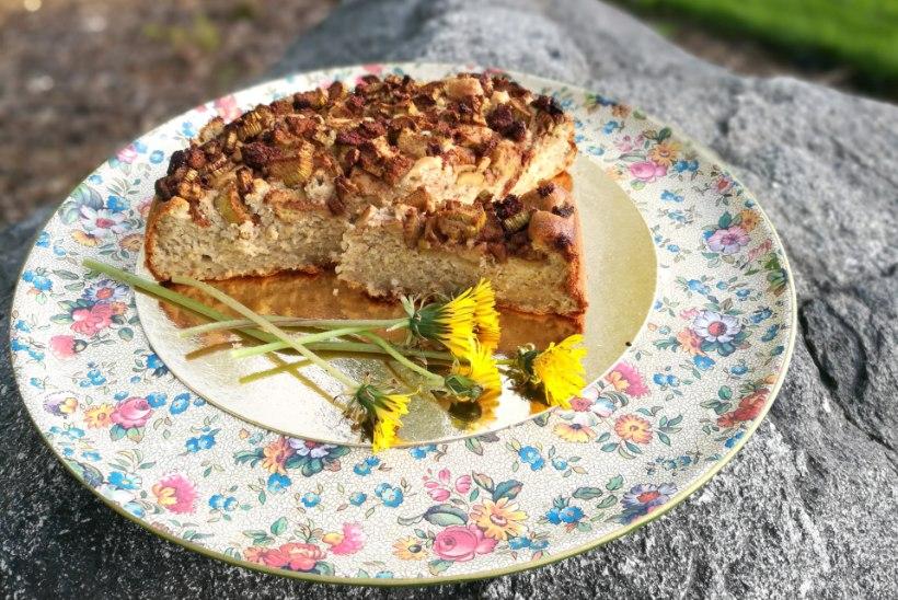 Kõigevabad koogid: Kas kook, kus puuduvad gluteen, laktoos ja valge suhkur, on ka maitsevaba?