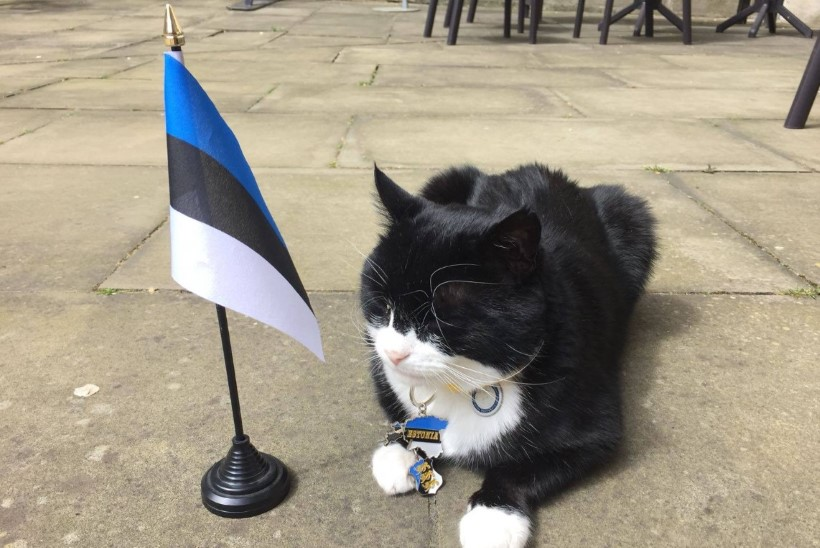 FOTOUUDIS | Suurbritannia välisministeeriumi tähtis ametnik saatis Eestile tervituse