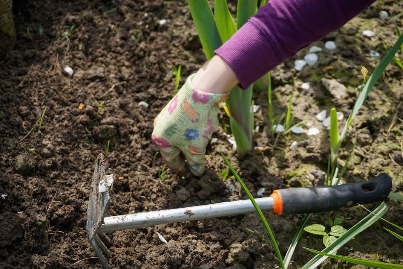 Tee neid aiatöid mais!